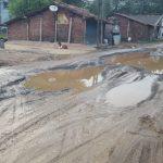નેત્રંગ ગામના રસ્તાનું ભારે ધોવાણ,૧-૧ ફુટ ઉંડા ખાડા પડ્યા,