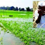 બનાસકાંઠા જિલ્લાના ખેડૂતો ને સહાય પેકેજ આપવા બાબતે રજુઆત