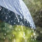 કચ્છમાં જોરદાર વરસાદ થતાં ખેડૂતો બેહાલ