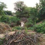 દિયોદર તાલુકાના નવાપુરા ગામની ગૌચર જમીનો મોટા પ્રમાણ દબાણો દુર કરવામાં આવતું નથી